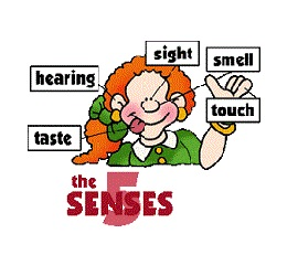 senses_icon
